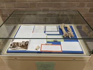 Centre for Buckinghamshire display